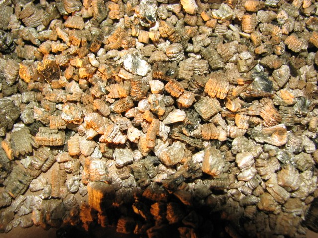 What Is Vermiculite Border Home And Property Inspections